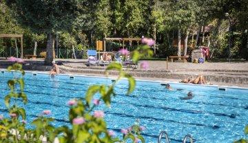 Montescudaio - Zwembad